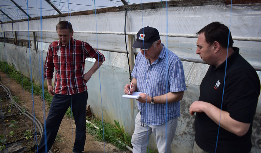 Oleg and Mike discussing planting in the polytunnels with Andrei translating.